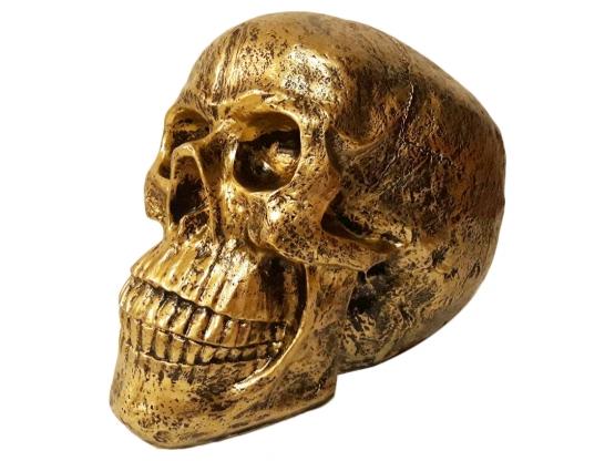 Sculpture en Résine Crâne - 50 CM