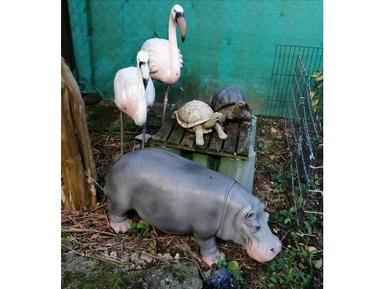 STATUE HIPPOPOTAME EN RESINE